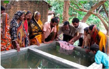 Огромные иностранные инвестиции ожидает индийский сектор аквакультуры