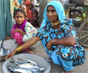 "Women fish traders, India. Photo: ICAR ""Gender in Fisheries: A Future Roadmap"""