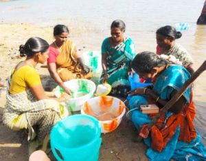 Women grading juvenile seabass, Pulicat Lake, Tamil Nadu, India. Photo: Dr. B. Shanthi, CIBA