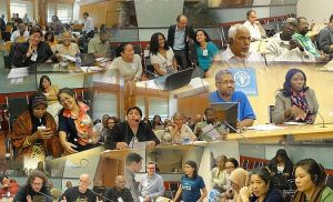 The civil society organisations at FAO events discussing the Small Scale Fisheries Guidelines.