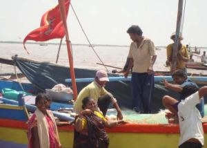 Trading hilsha, Namada estuary, Gujarat, India.