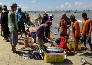 Male fishers and women fish traders on the beach, Pekalongan, Indonesia. Photo: Indah Susilowati.
