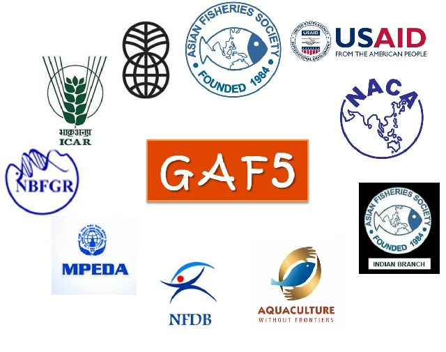 GAF5 sponsors 2-sm-sm