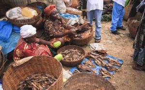 Women selling smoked fish in a market, Sierra Leone. Photo: Environmental Justice Foundation, http://ejfoundation.org/oceans/artisanal-fishing-industry-in-sierra-leone